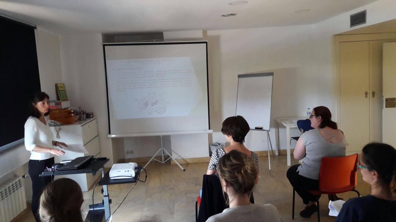 Máster de Logopedia Clinica San Vicente: Trastornos del Mecanismo Central del Lenguaje