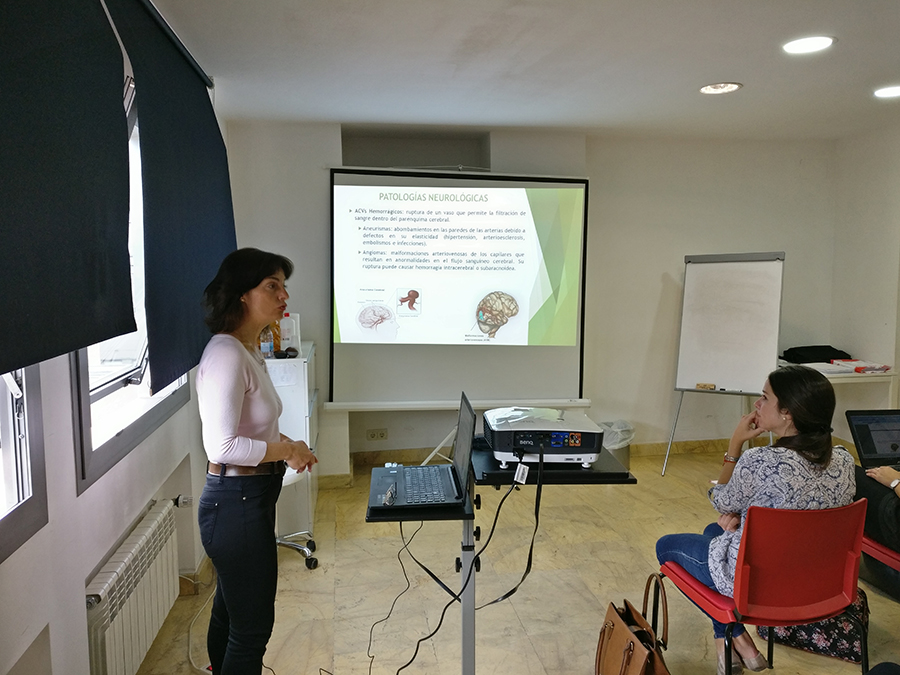 Máster de Neuropsicología Clínica y Neurorrehabilitación. Clínica San Vicente