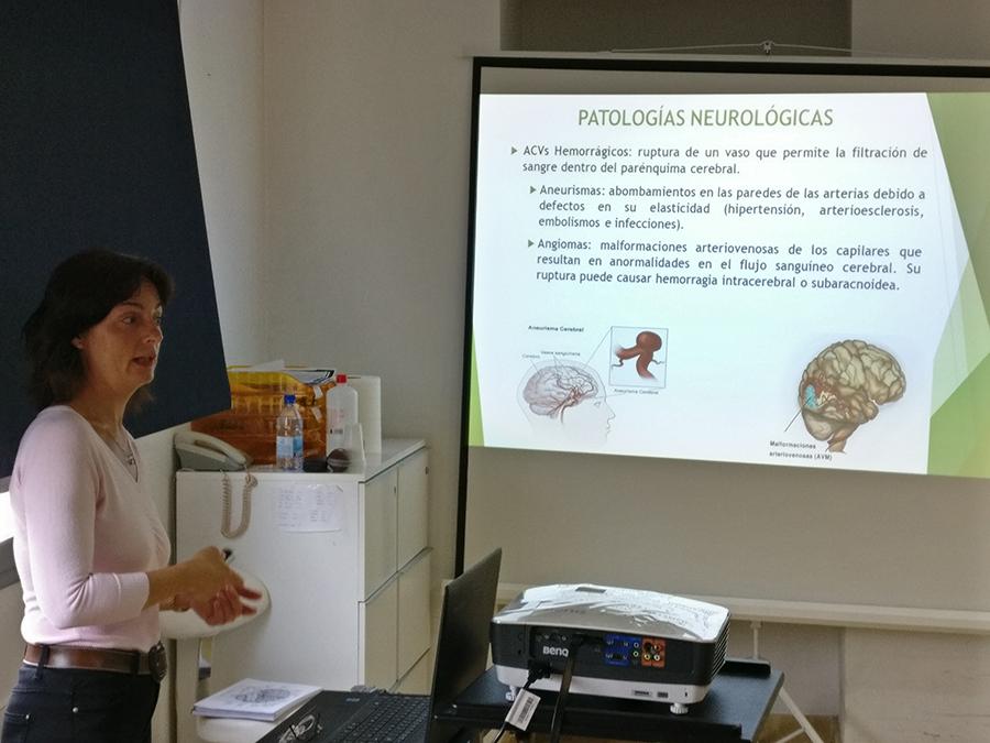 Lenguaje: lectura, escritura y cálculo. Evaluación y Tratamiento. Máster de Neuropsicología Clínica